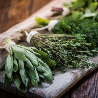 3 best herbs to grow at home 1