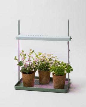 Herb Light Garden 1