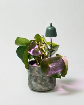 Elho Lamp Green 1