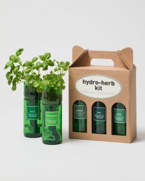 Hydro herbs