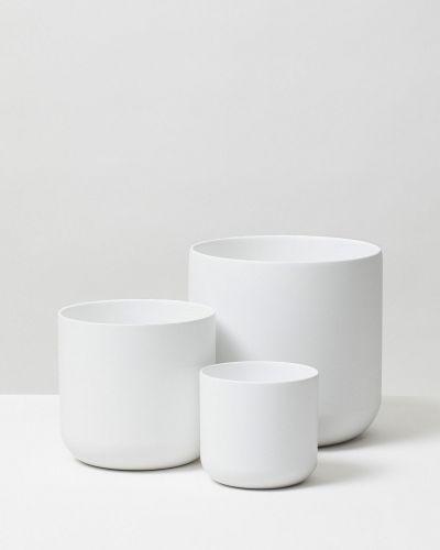 Lisbon White 1